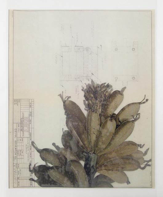 , 'Collage,' 2014, Galeria Nara Roesler