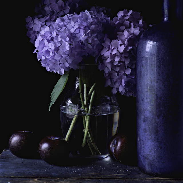 , 'Still Life with Hydrangea and Plums,' , Pucker Gallery