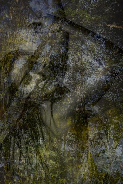Paulo de Tarso Penna da Costa, 'REFLECTER IN ORIGIN', 2017, Galeria Arte & Fotografia