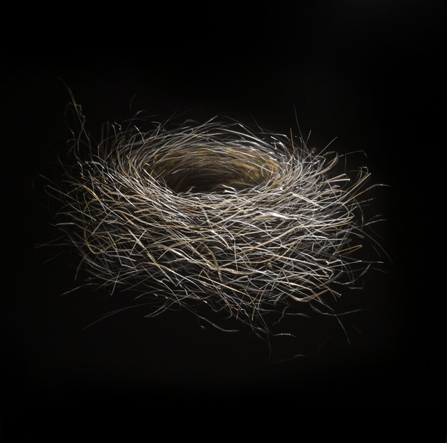 , 'Bluebird Nest,' , Callan Contemporary