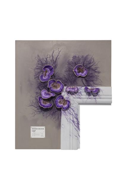 , 'Gut Reactor: Seratonin Purplepore,' 2013, Chamber