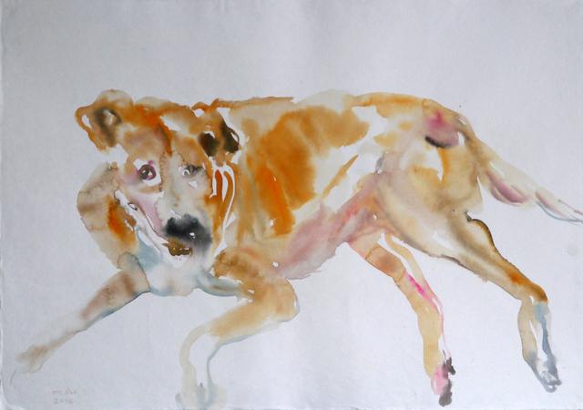 Tawan Wattuya, 'Street Dog 2', 2019, Tang Contemporary Art