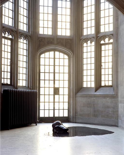 , 'Good Night Darthy,' 2006, Diaz Contemporary