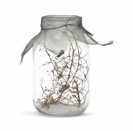 David Hammons, 'Fly Jar', Christie's