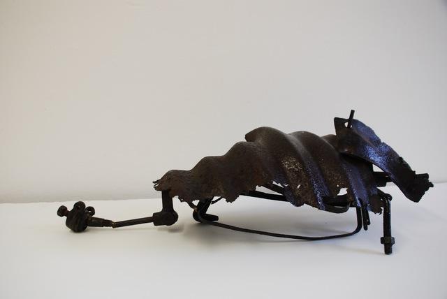 , 'Armadillo,' 1973, Susan Eley Fine Art