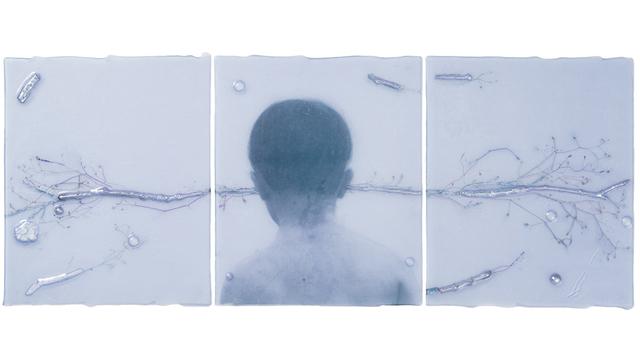 , 'Still,' 2016, Callan Contemporary