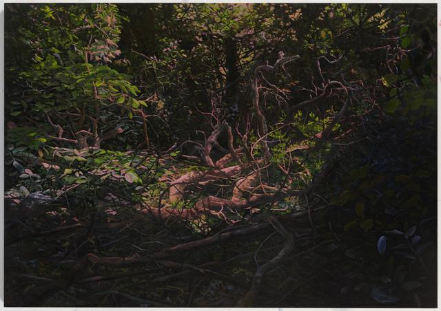, 'Hedge 5,' 2019, UNION Gallery
