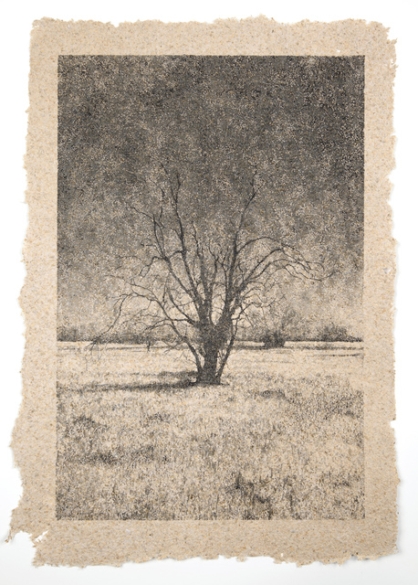 , 'Tree 39,' , Tracey Morgan Gallery