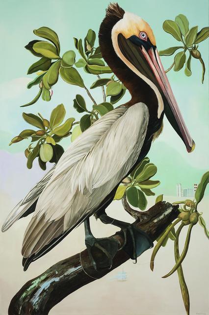 , 'Brown Pelican,' 2016, 101/EXHIBIT