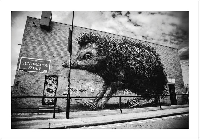 , 'ROA - London 2012,' 2017, Black Book Gallery