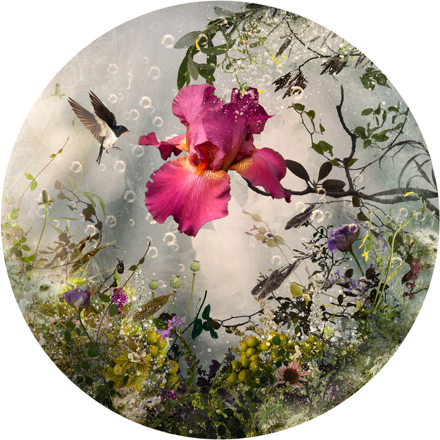 , 'Arcadia,' 2013, Saatchi Art