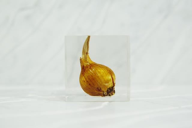 , '[acrylic bulb #2],' 2016, Chamber