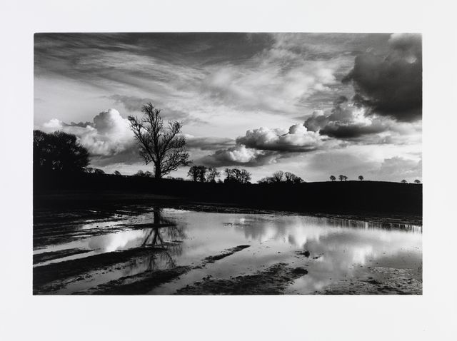 Don McCullin, 'A flooded field near my house in Somerset', 2016, Photography, Gelatin Silver Print, Hauser & Wirth