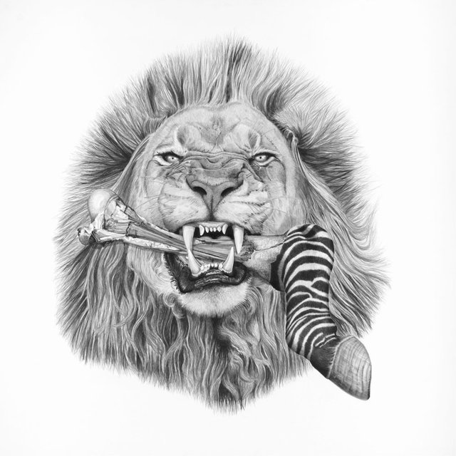 , 'African Lion ( Panthera Leo ),' 2017, Parlor Gallery