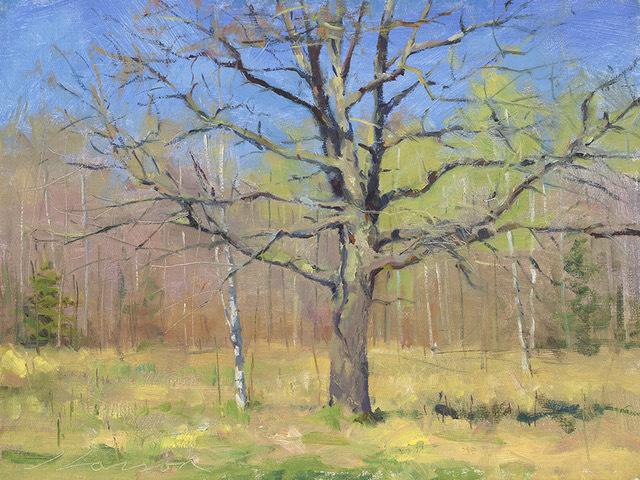 , 'Spring Oak,' 2000-2019, Helena Fox Fine Art