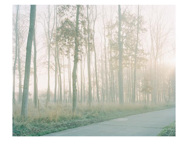 , 'Wilderness Road,' 2013, Francesca Maffeo Gallery