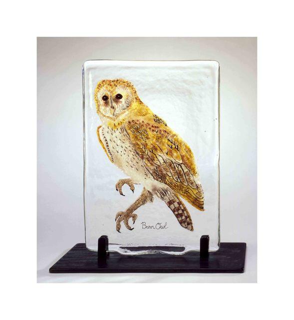 , 'BIRD PAGE: BARN OWL,' 2004, Traver Gallery