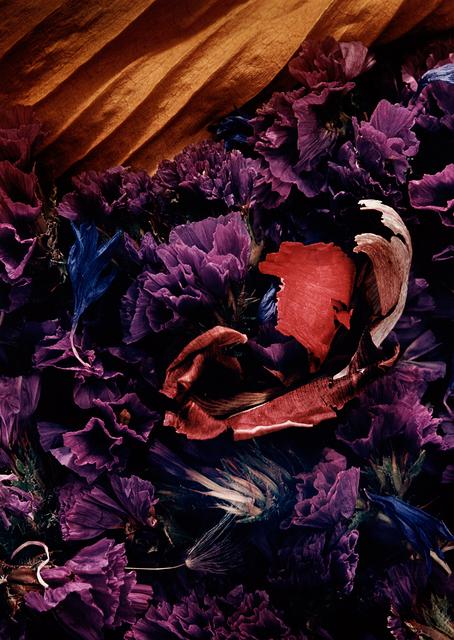 , 'Sömn (Sleep),' 1993, CFHILL