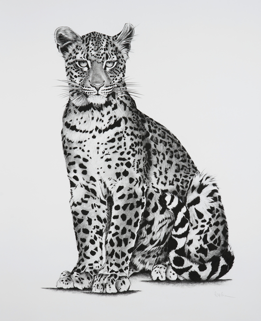 , '17. Young Leopard,' 2018, Sladmore Contemporary