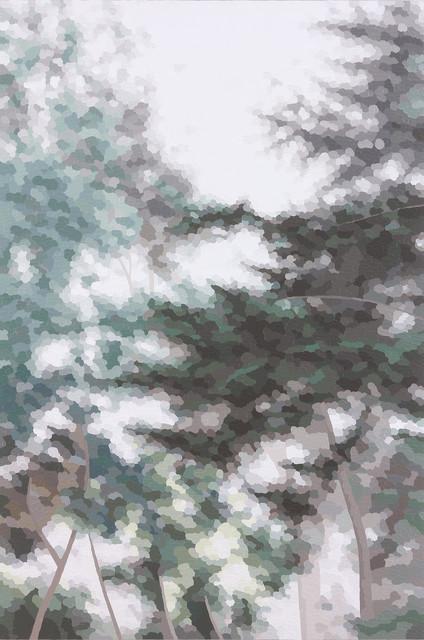 Elaine Coombs, 'Verdant Fog', Walker Fine Art