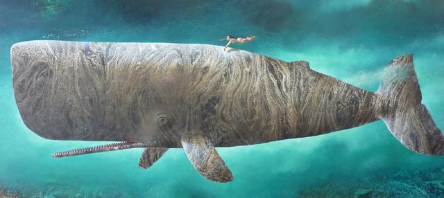 , 'Whale VIII,' 2017, Rebecca Hossack Art Gallery