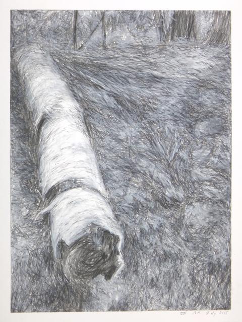 , 'Fallen Birch VII,' 2015, Jewelers'Werk Galerie
