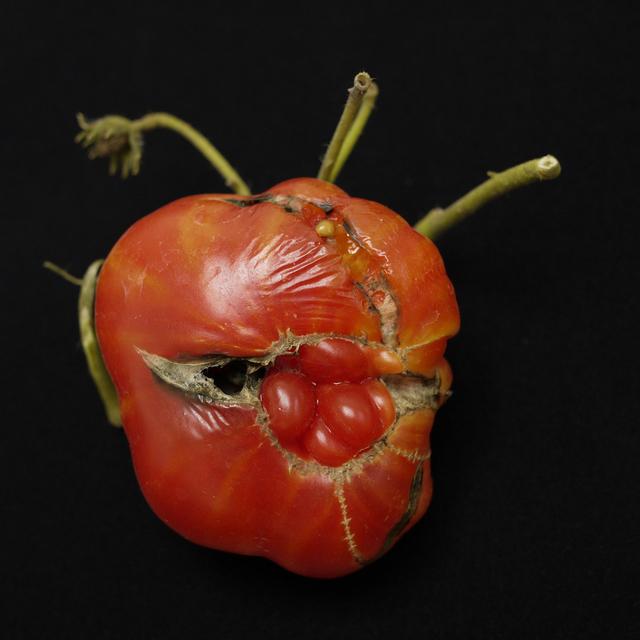 , 'Tomato,' 2010, Benrubi Gallery