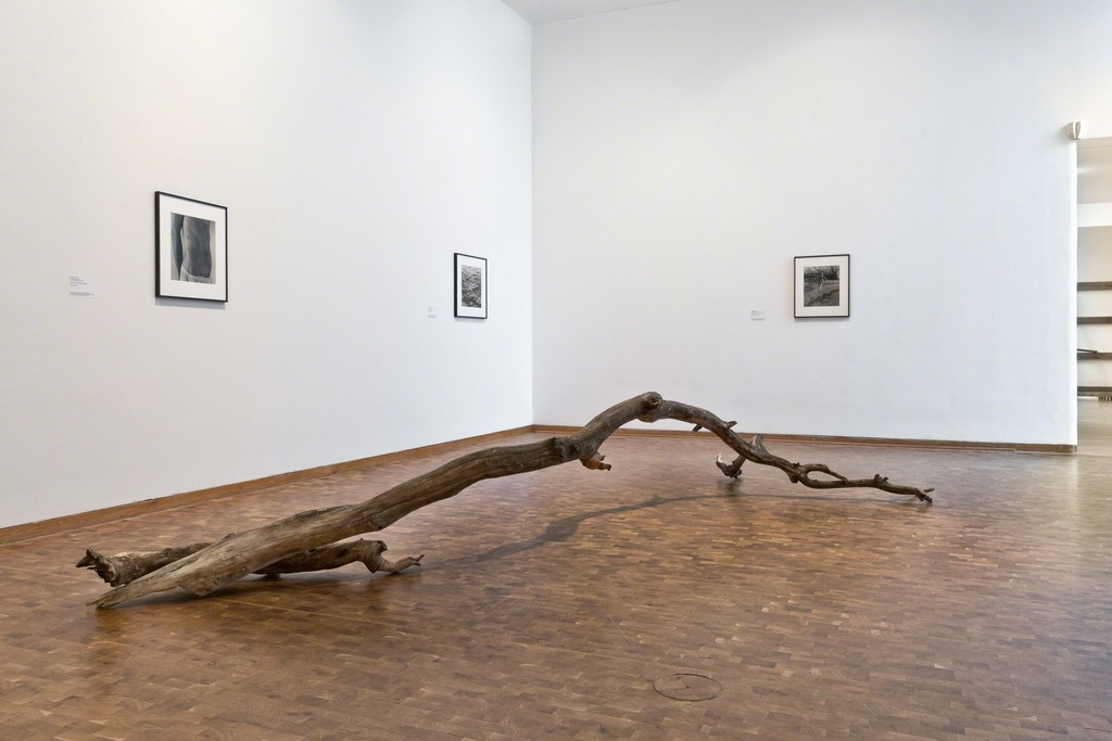"Installation view of ""Danh Võ: Ydob eht ni mraw si ti"" at Museum Ludwig, Cologne (2015)"