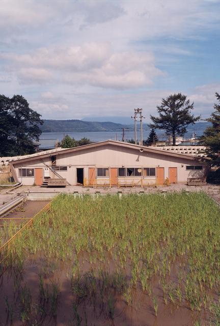 , 'Tableaux Photografiques (T.10.01),' 2001, Galeria Filomena Soares