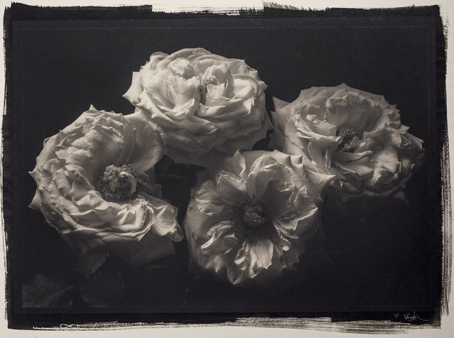 , 'Still Life #590,' 1997, Photography West Gallery