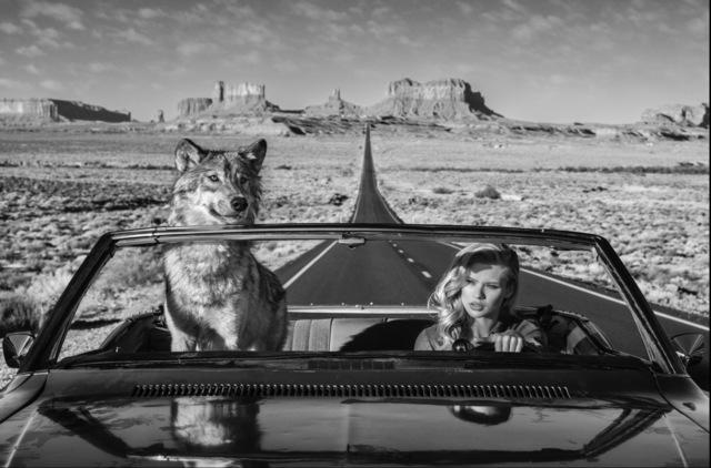 David Yarrow, 'Road Trip', 2018, Isabella Garrucho Fine Art