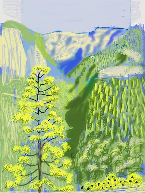David hockney the yosemite suite annely juda fine art for David hockney painting