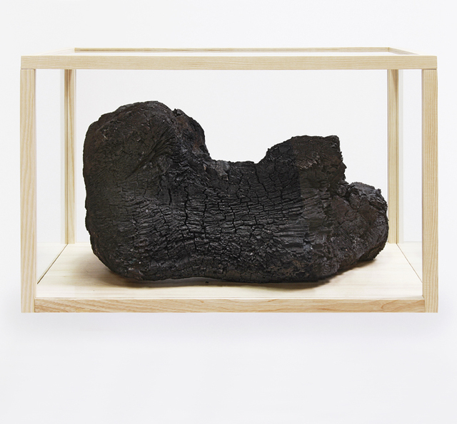 , 'burned,' 2007, ECC Collection