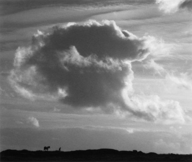 , 'Untitled,' 2008, photo-eye Gallery