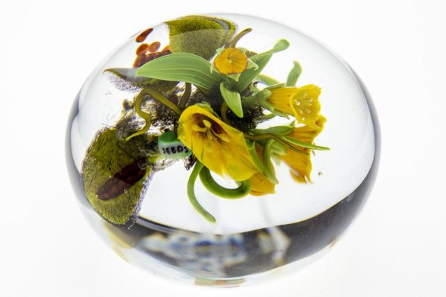 Paul Stankard, 'Paperweight, Seeds yellow Lillys w/wildflowers & Bursting seed pod', 1997, Modern Artifact