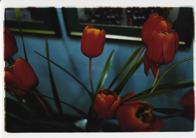 , 'noir,' 2010, Tomio Koyama Gallery