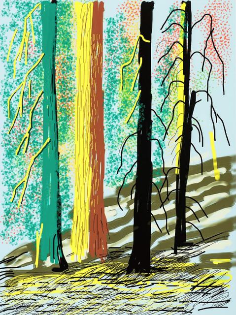 David Hockney, 'Yosemite Suite No.7', 2010, Dallas Collectors Club