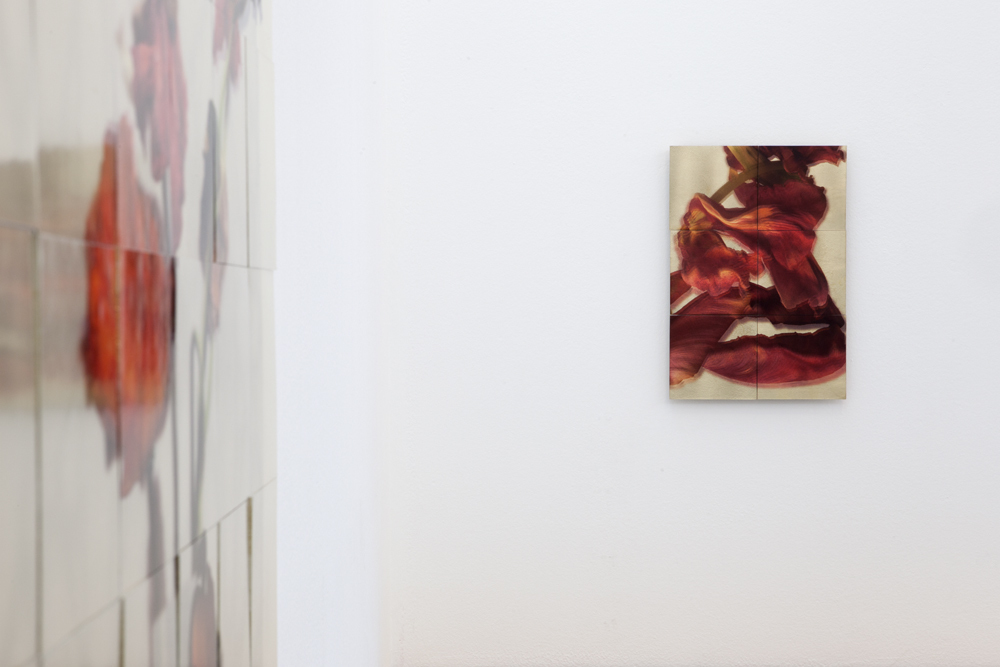 Exhibition view with 'Mohn II' (detail) and 'Untitled'; photo: Lukas Heibges