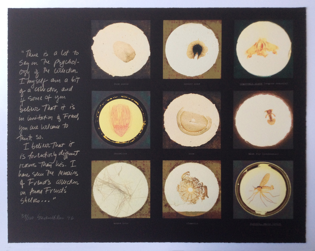 , 'After microscope slides found in Freud's collection and a quotation from Jacques Lacan,' 1996, Frederick Mulder