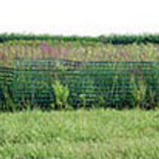 Tom Bamberger, 'Funny Fence', 2003, Museum of Contemporary Photography (MoCP)