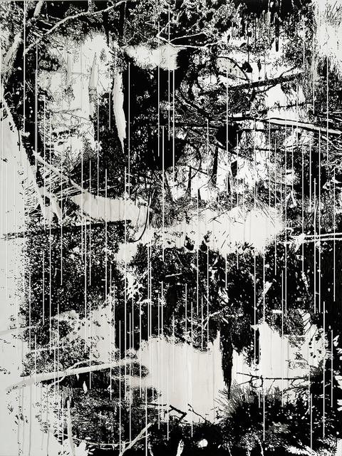 , 'Raw Material Nr. 1,' 2015, Galerie Nikolaus Ruzicska