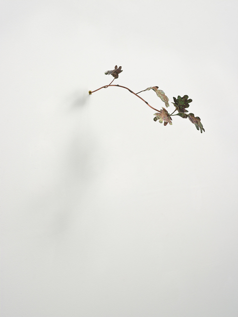 , 'Pinocchio Leaves (oak),' 2013, Christian Andersen