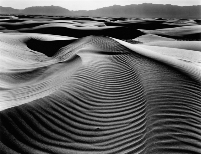 Brett Weston, 'Dune, White Sands, New Mexico', 1946, Holden Luntz Gallery