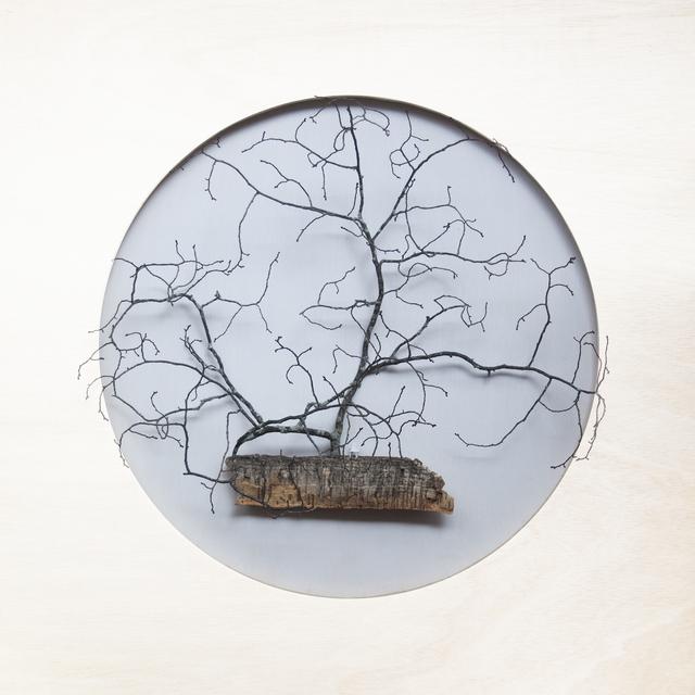 María Ángeles Atauri, 'Bubble. Chair and big tree', 2021, Sculpture, Natural materials on plastic, Galería Marita Segovia