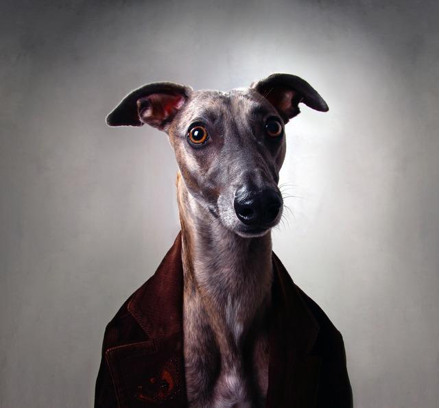 , 'Untitled,' 2012, Anna Laudel