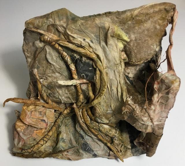 , 'Biodegraded,' 2017, Osceola Gallery
