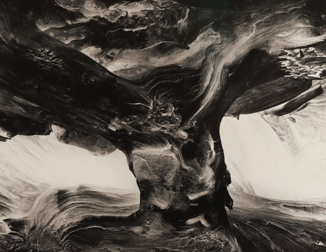 , 'Tree Trunk,' 1971, Seagrave Gallery