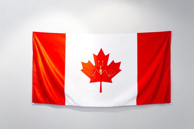 , 'Canada Flag,' 2017, Galerie Iragui