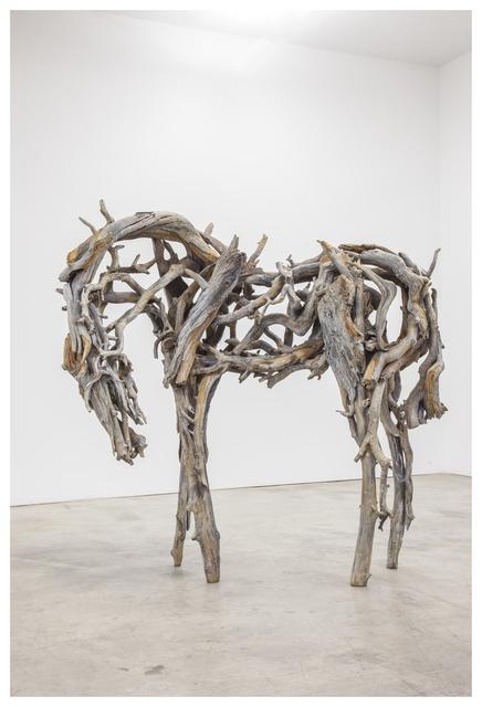 , 'Untitled (4046.1),' 2013, Anglim Gilbert Gallery