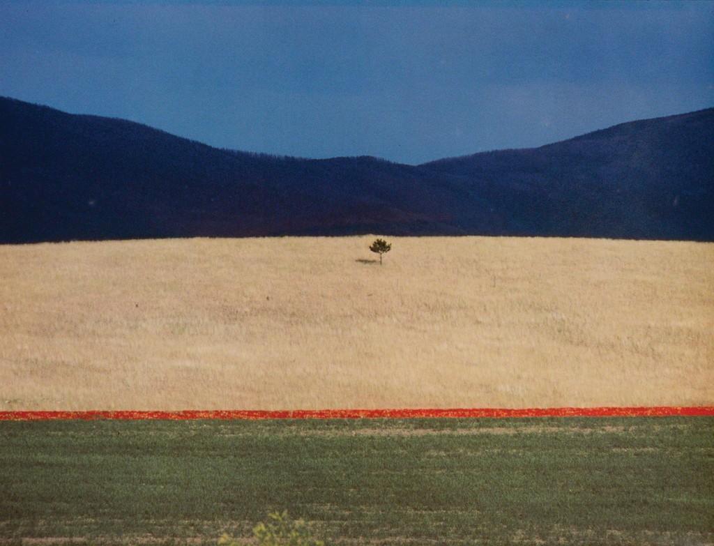 Preferenza Franco Fontana   Paesaggio (1990)   Artsy SY15